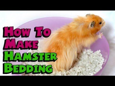 Hamster Bedding Dust Free 100 Safe, Can You Use Shredded Paper For Hamster Bedding