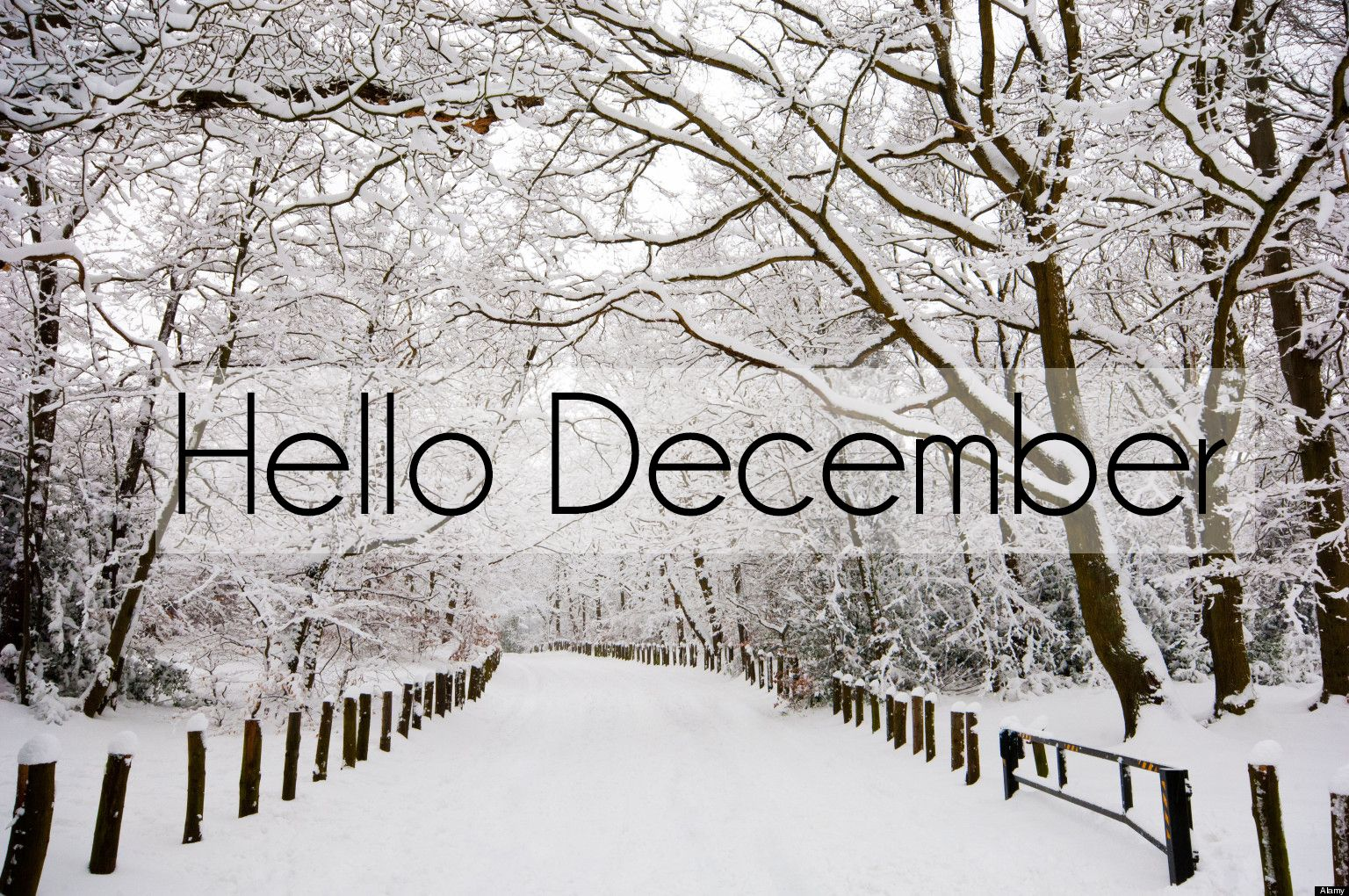 hello month quotes hello happy