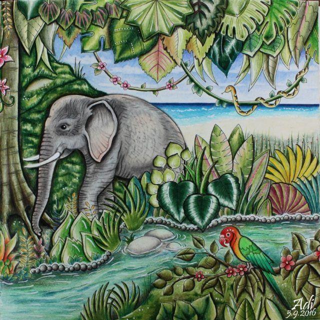 Sieh Dir Dieses Instagram Foto Von Adi Coloring An Gefallt 51 Mal Magical Jungle Johanna Basford Johanna Basford Coloring Book Jungle Coloring Pages