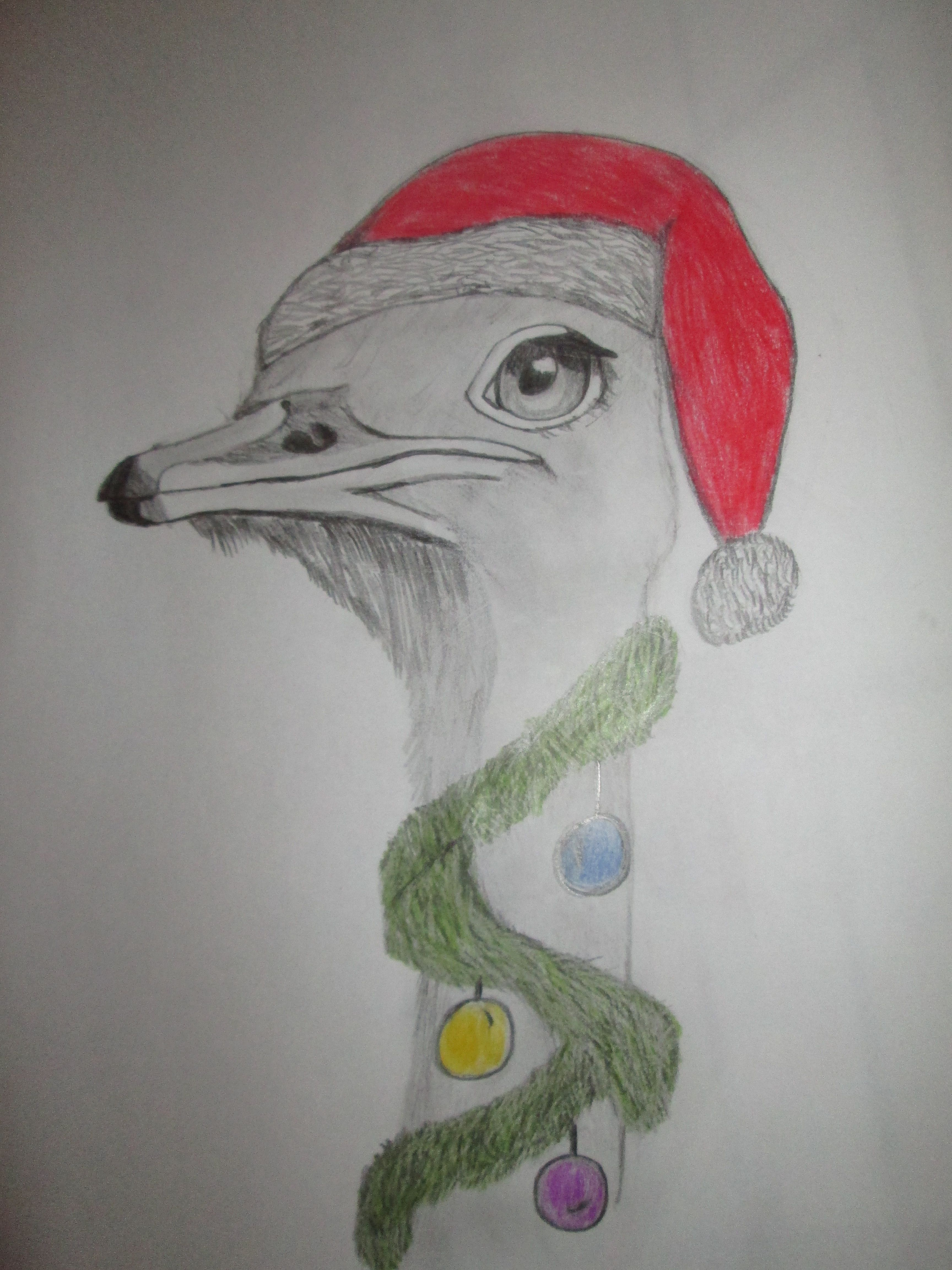 this was for the school Christmas newspaper 2013