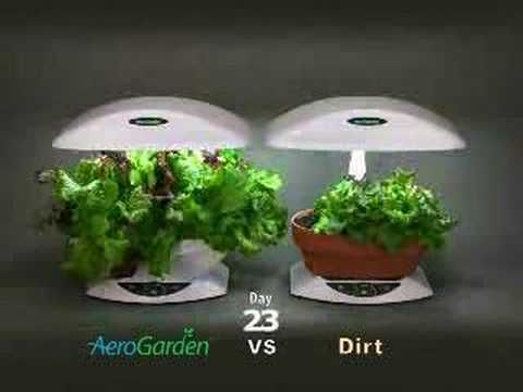 Small Indoor Garden Aquaponics Garden Compost Small 640 x 480