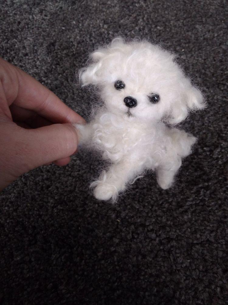 Ooak Needle Felted Maltese Poodle Puppy Dog Dolls Bears Bears