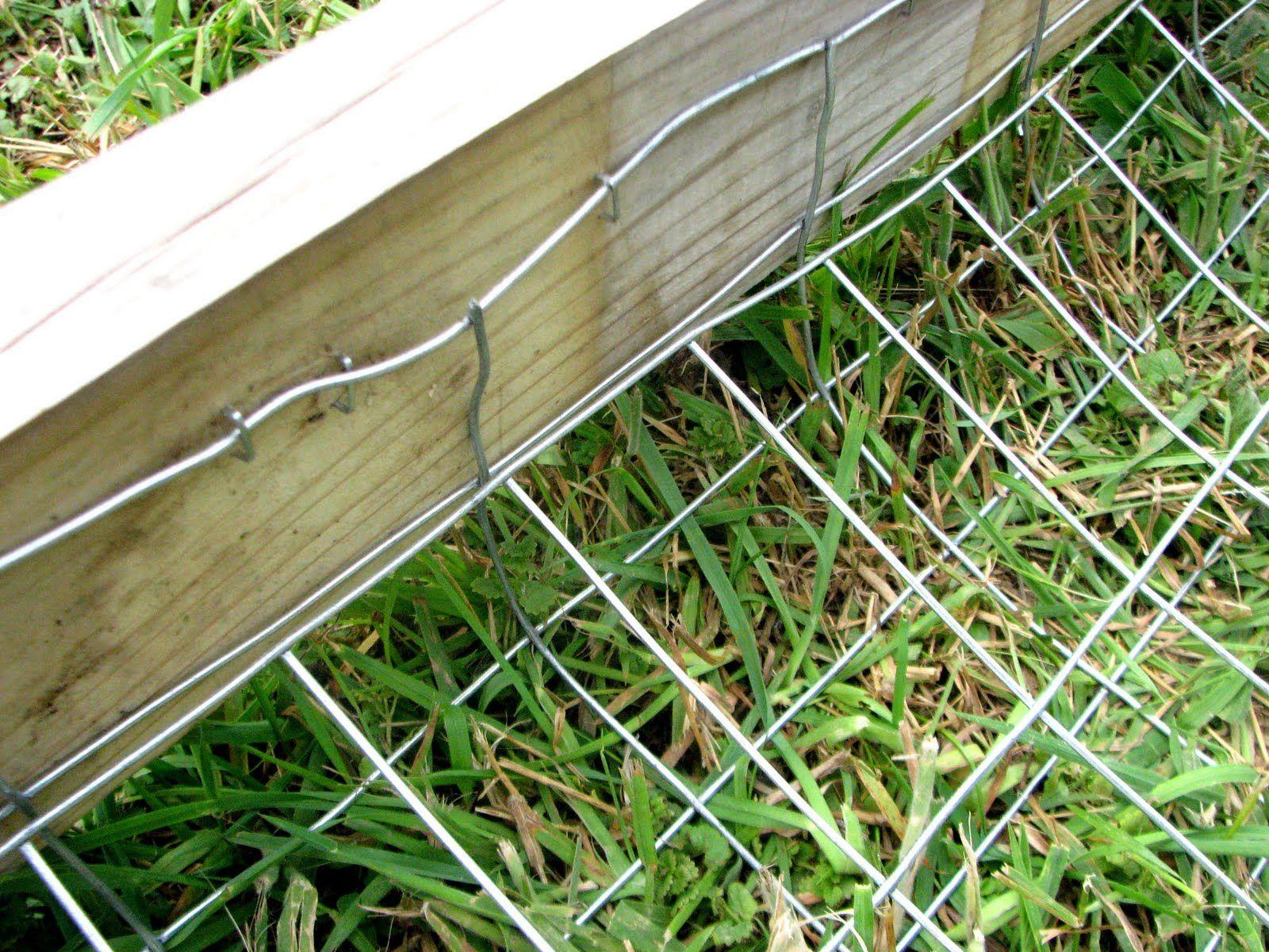 Dog Proof Fence Diy Dog Fence Dog Fence Dog Proof Fence