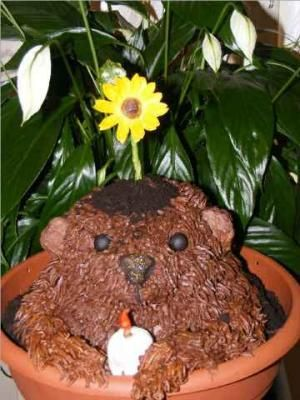 Happy Ground Hog Day  Cake!  Items I used to make the ground hog cake: wilton doll cake pan  #333 cake decorating tip 5 inch bowl 10 inch hanging basket with hanger removed 10 inch