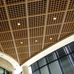 Woodcube Architectural Surfaces INC Open cell acoustical ceiling louvers Finishes: red oak, cherry, maple, or ash This unique type of ceiling system conceals the clutter of sprinklers, ducts, lights, and raceways while permitting the function of those mechanical systems through the open louver design.