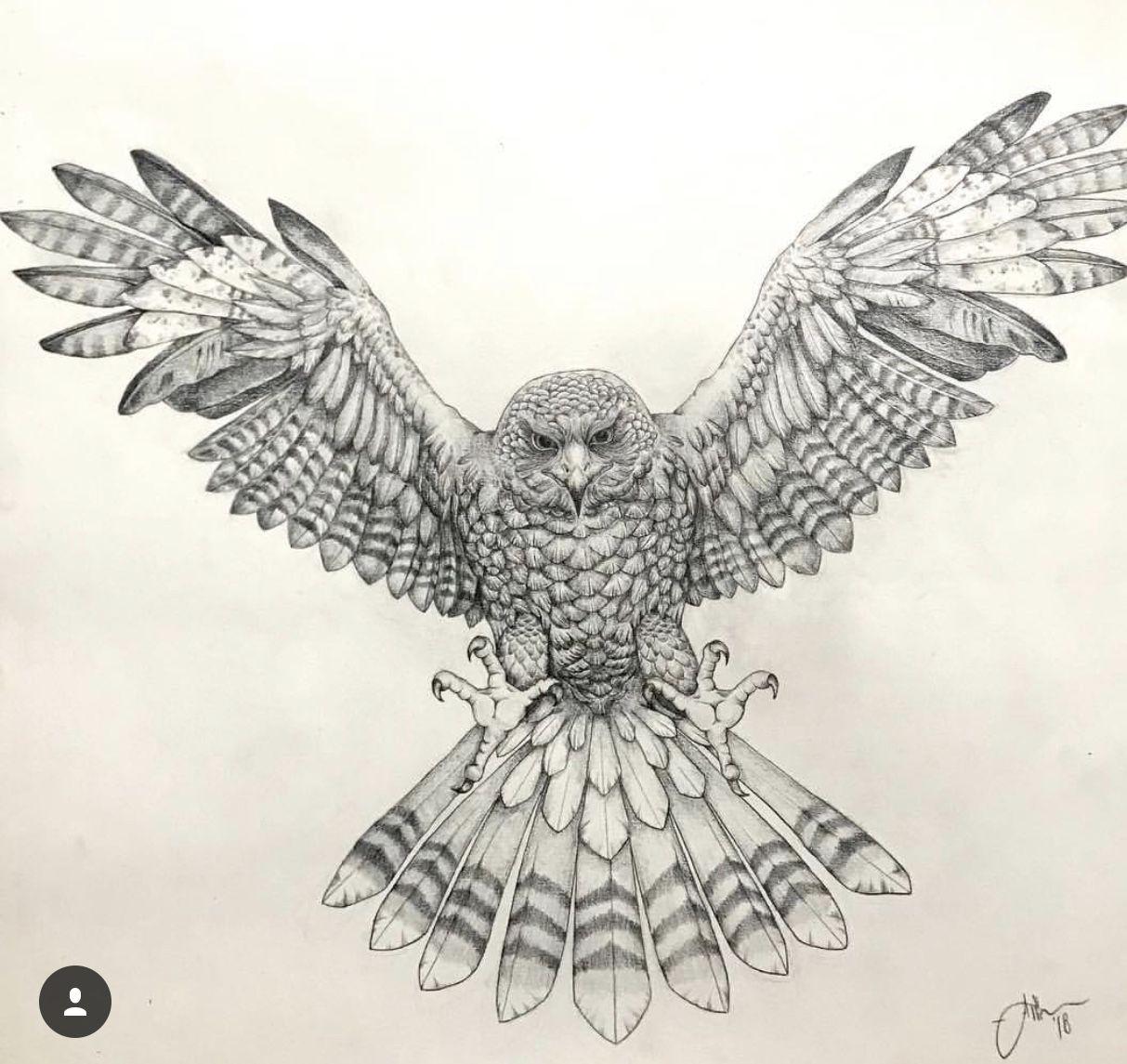 Harris Hawk Eagle Chest Tattoo Eagle Tattoos Hawk Tattoo