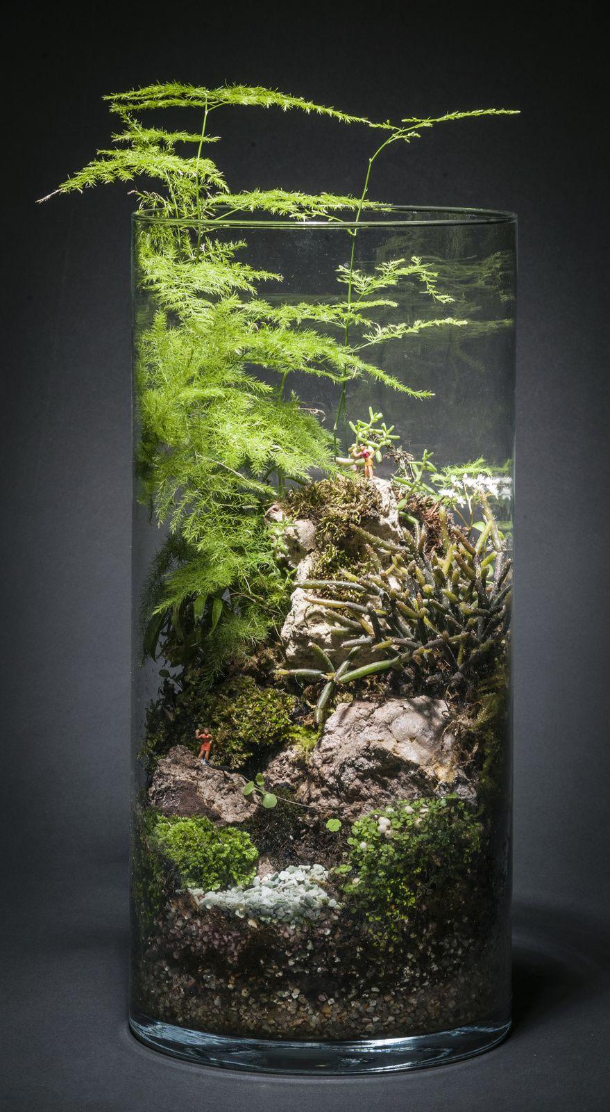 plantes sur roches et petits personnages terrariums. Black Bedroom Furniture Sets. Home Design Ideas
