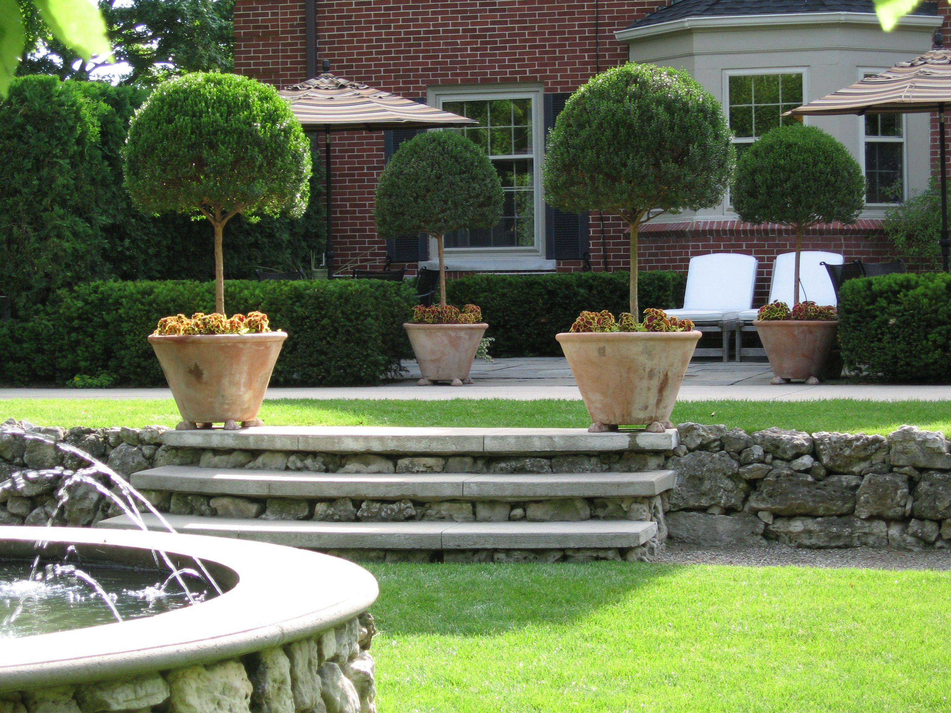 Stepped Garden Design Ideas