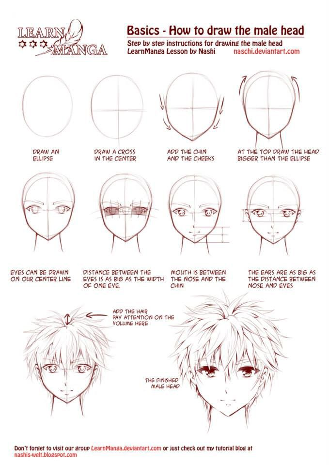 Learn Manga How To Draw The Male Head Front By Naschi Deviantart Com On Deviantart Drawing M Anime Drawings Manga Drawing Tutorials Anime Drawings Tutorials