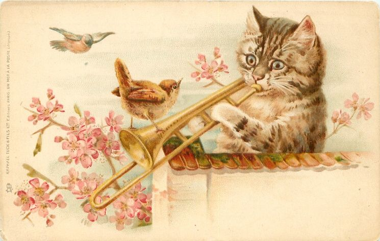 cat behind wall plays trombone, wren perches on instrument, pink blossom