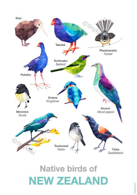 New Zealand Birds Poster New Zealand Art Bird By