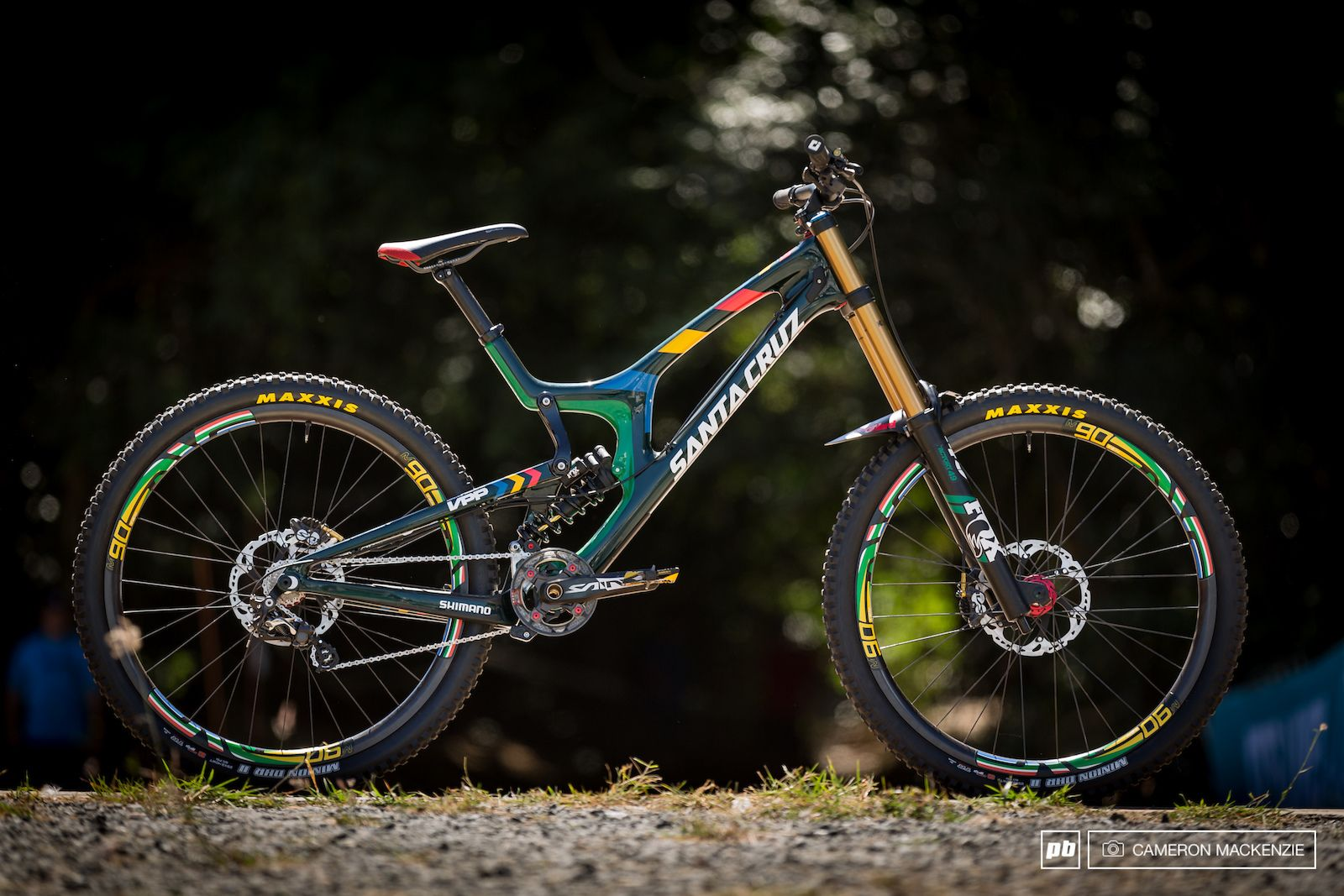 24 Custom Painted DH Bikes at Cairns World Champs 2017