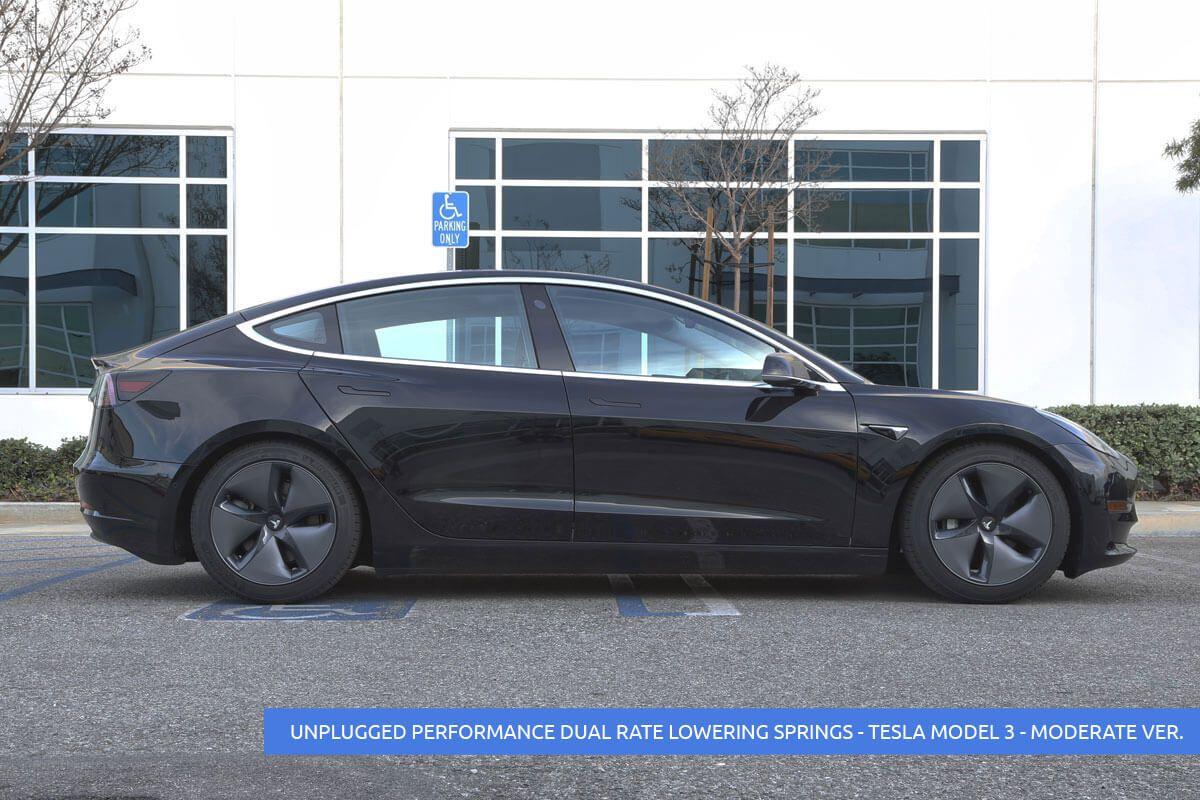 Dual Rate Linear Lowering Spring Set for Tesla Model 3 | Car | Tesla