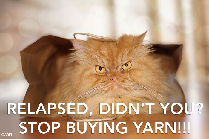 Relapsed, didn't you? Stop buying yarn!