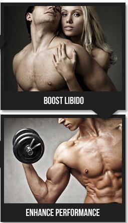 testo up max workouts workoutplan weightsupplements