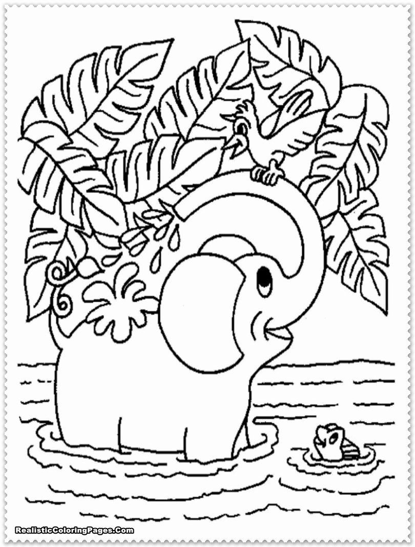 Jungle Animal Coloring Pages Best Of Realistic Jungle Animal Coloring Pages Realistic In 2020 Elephant Coloring Page Animal Coloring Pages Free Coloring Pages