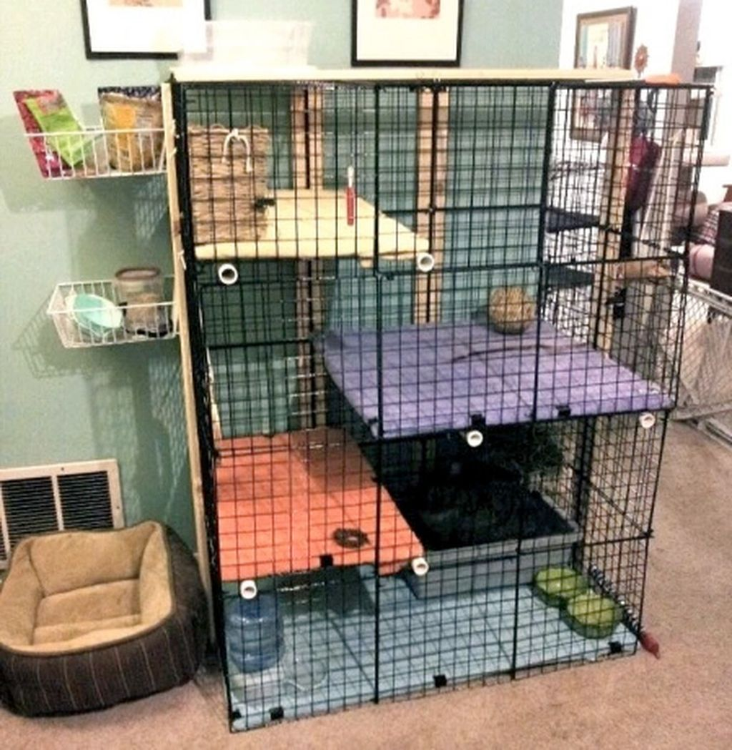 49 Unique Diy Pet Cage Design Ideas You Have To Copy Indoor Rabbit Cage Indoor Rabbit Diy Rabbit Cage