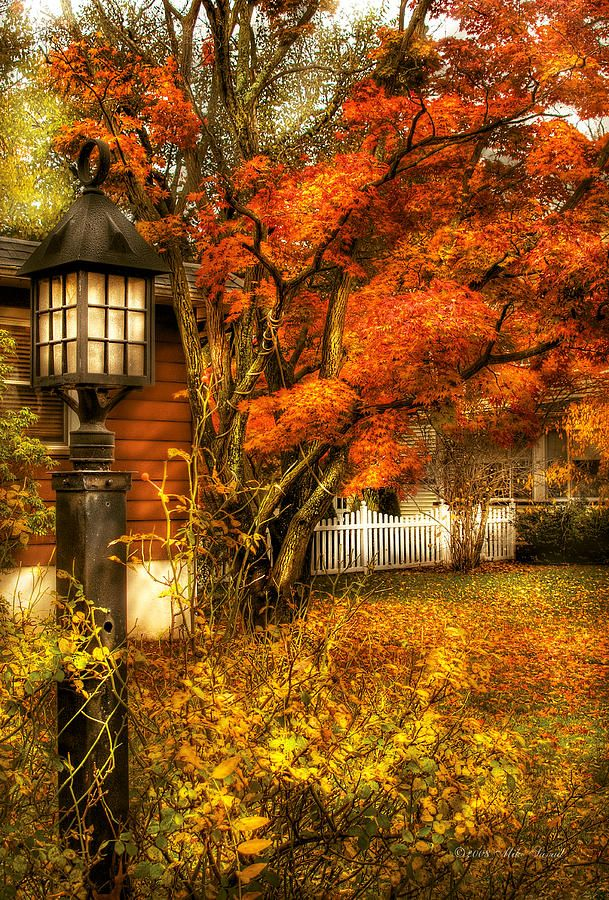 Autumn - House - Autumn Light by Mike Savad #autumnscenery