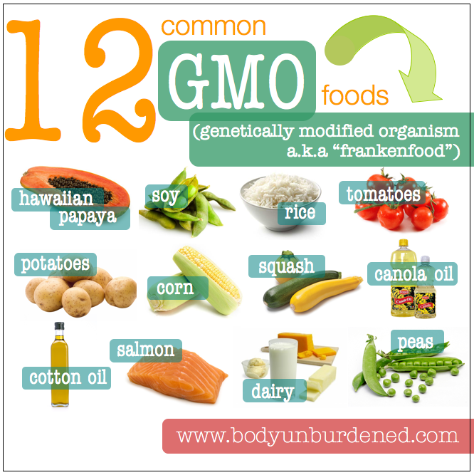 Common Gmo Genetically Modified Foods Benefits Of Organic Food
