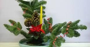 Resultat d'imatges de ikebana navidad