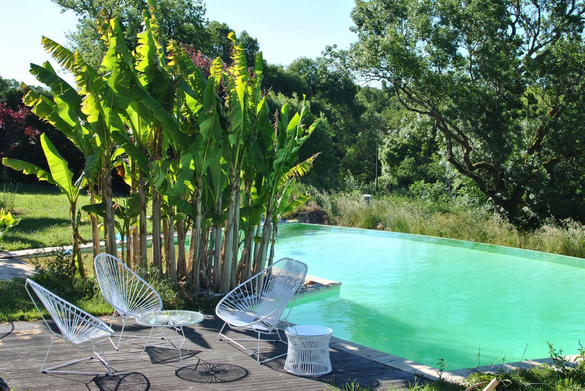 boqa #acapulco #fauteuil #chair #decoration #design #swimmingpool ...