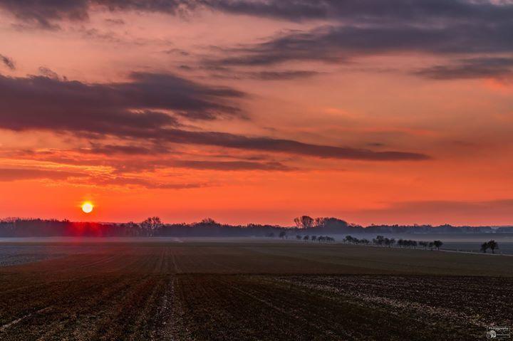 Der Sonnenaufgang im Nordharz Guten Morgen ich wünsche Euch einen schönen Freitag. Viele Grüße  @Teilen ist erwünscht  #Sonnenaufgang #Sonne #Abbenrode #Lochtum #Nordharz #Harz #GutenMorgen #Canon #Teilen_ist_erlaubt