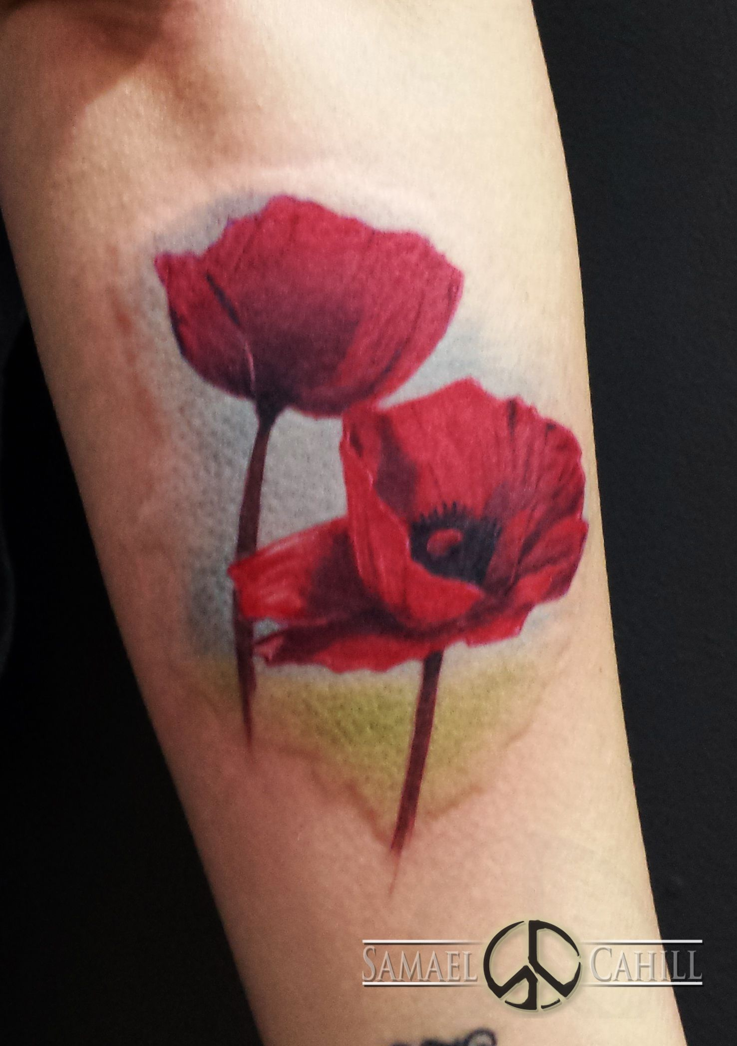 Remembrance Poppies Tattoo By Samael Cahill Tattoos Pinterest