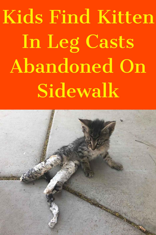 Kids Find Kitten In Leg Casts Abandoned On Sidewalk In 2020 Kitten Leg Cast It Cast