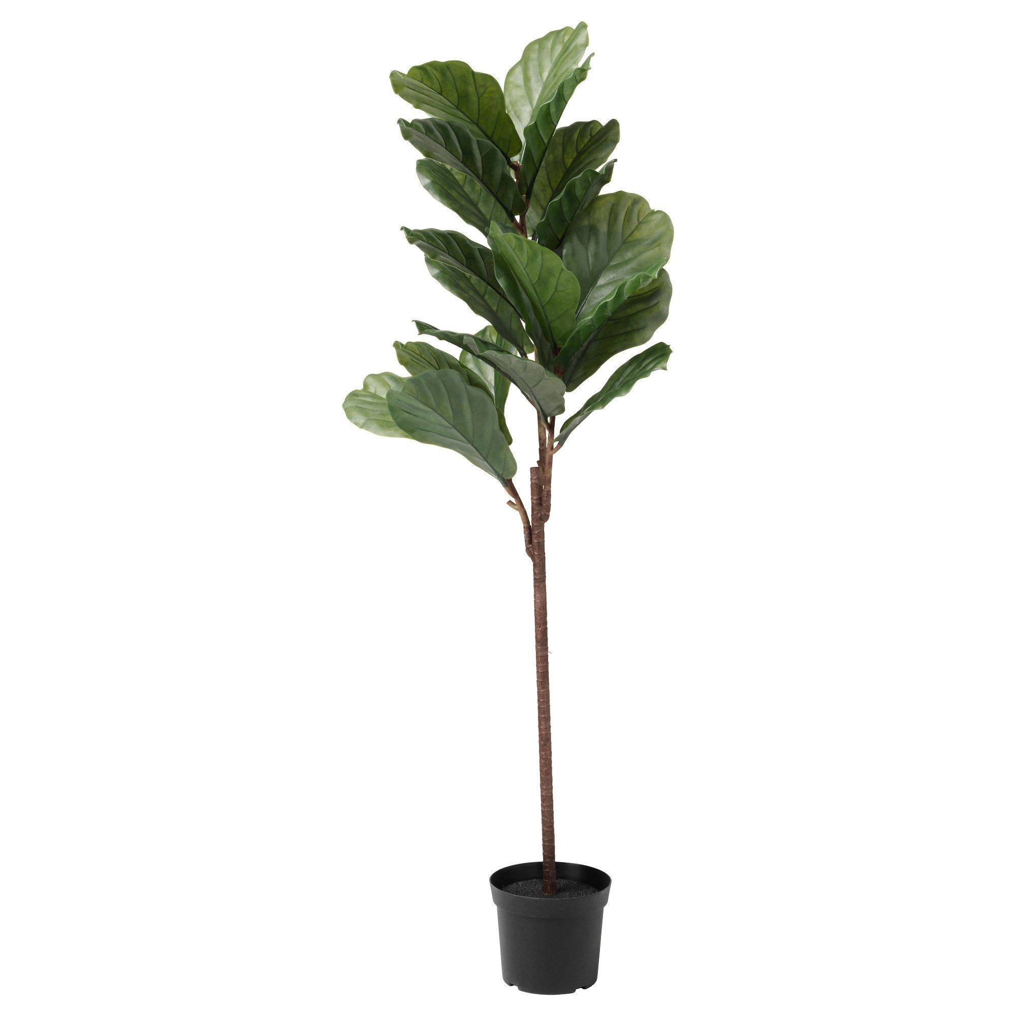 Ikea fejka artificial potted plant indooroutdoor fiddleleaf fig