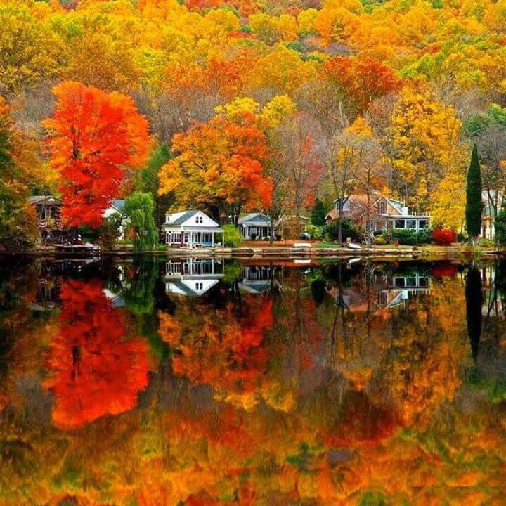 Gorgeous Fall colors!!!
