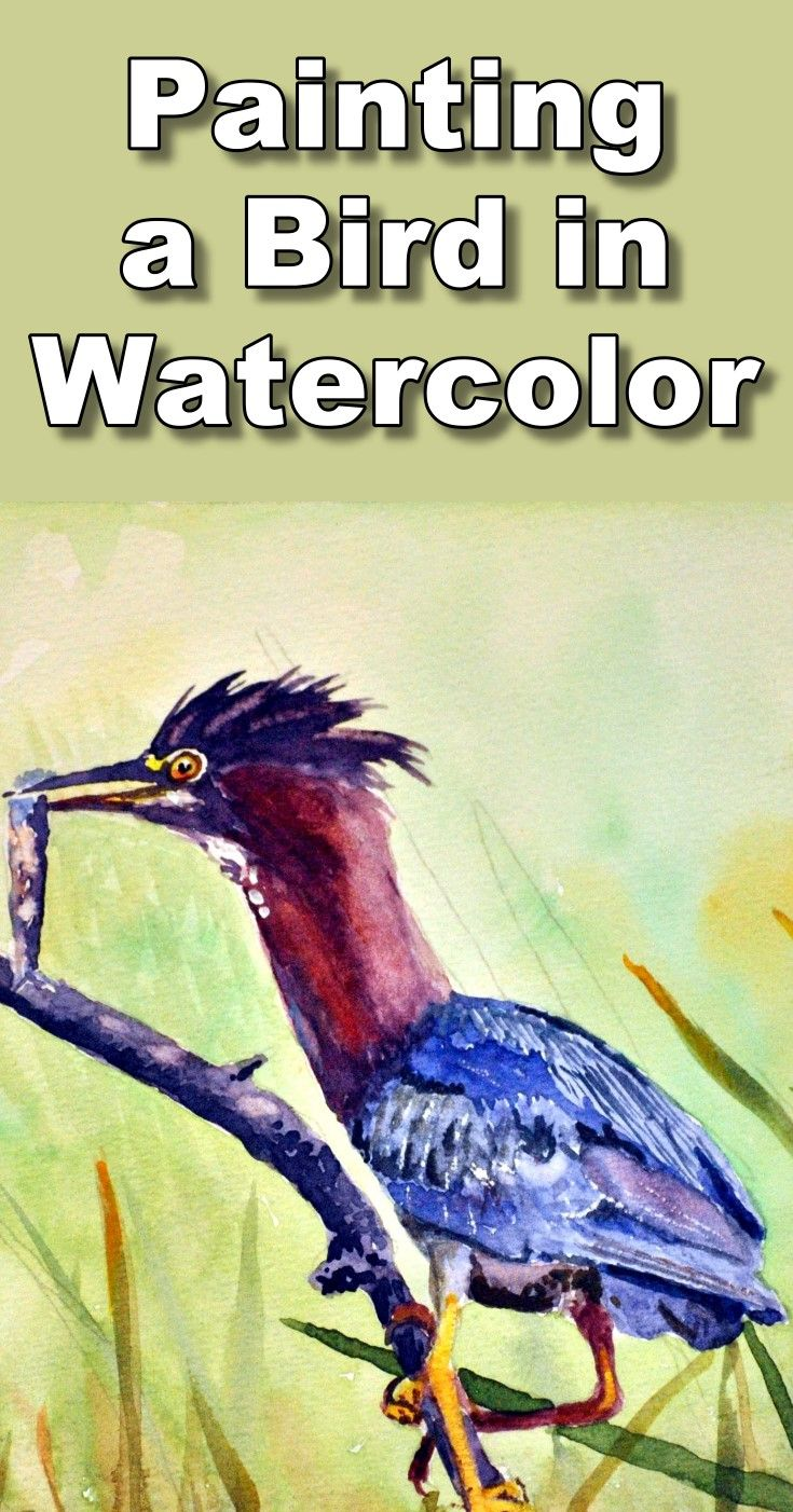 How To Paint A Heron And Fish In Watercolour Watercolor Bird