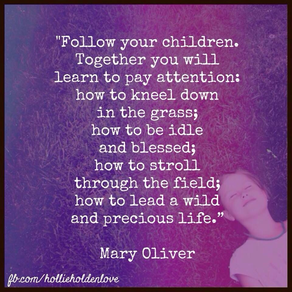 Follow your children Mary oliver, Life quotes, Life