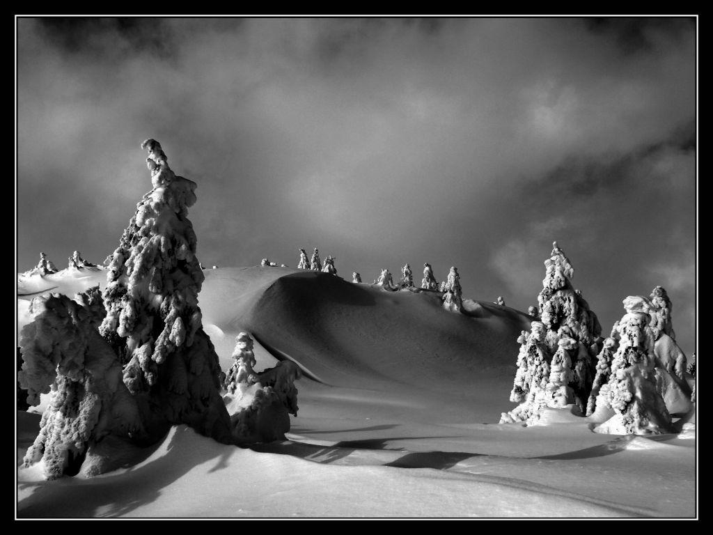 Csaba Balasi, MFIAP - Winter Story 10/20, 2016