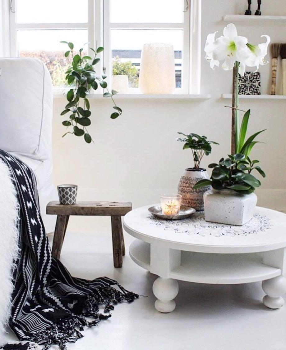 Schlafzimmer Mit Vielen Pflanzen: Home Decor, Decor Interior