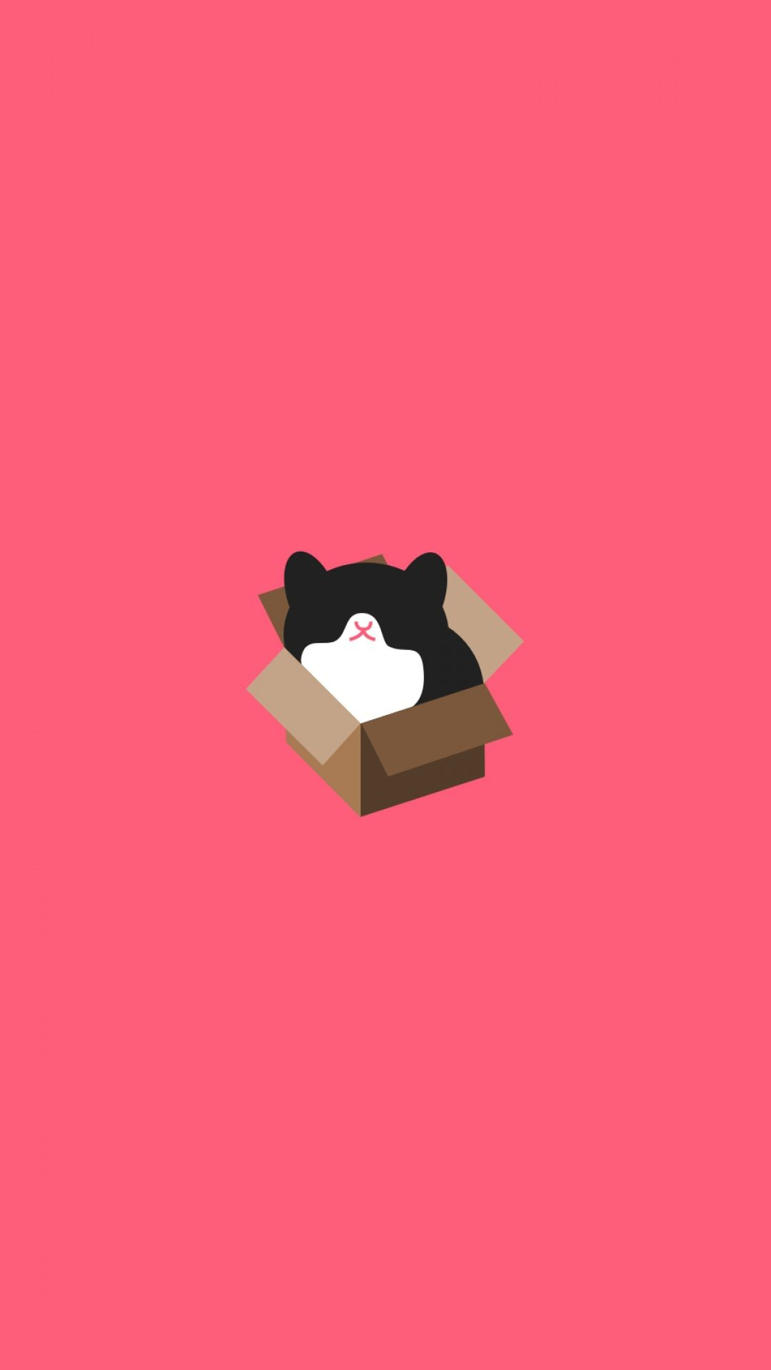AuBergewohnlich Kitty In A Box / Find More #Minimalistic #iPhone U0026 #Android #Wallpapers