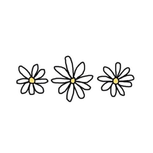 Daisies Are Popular On Clothing And Other Stuff Now Tumblr Transparents And Layovers Tumblr Flower Tumblr Png Theme Dividers Instagram