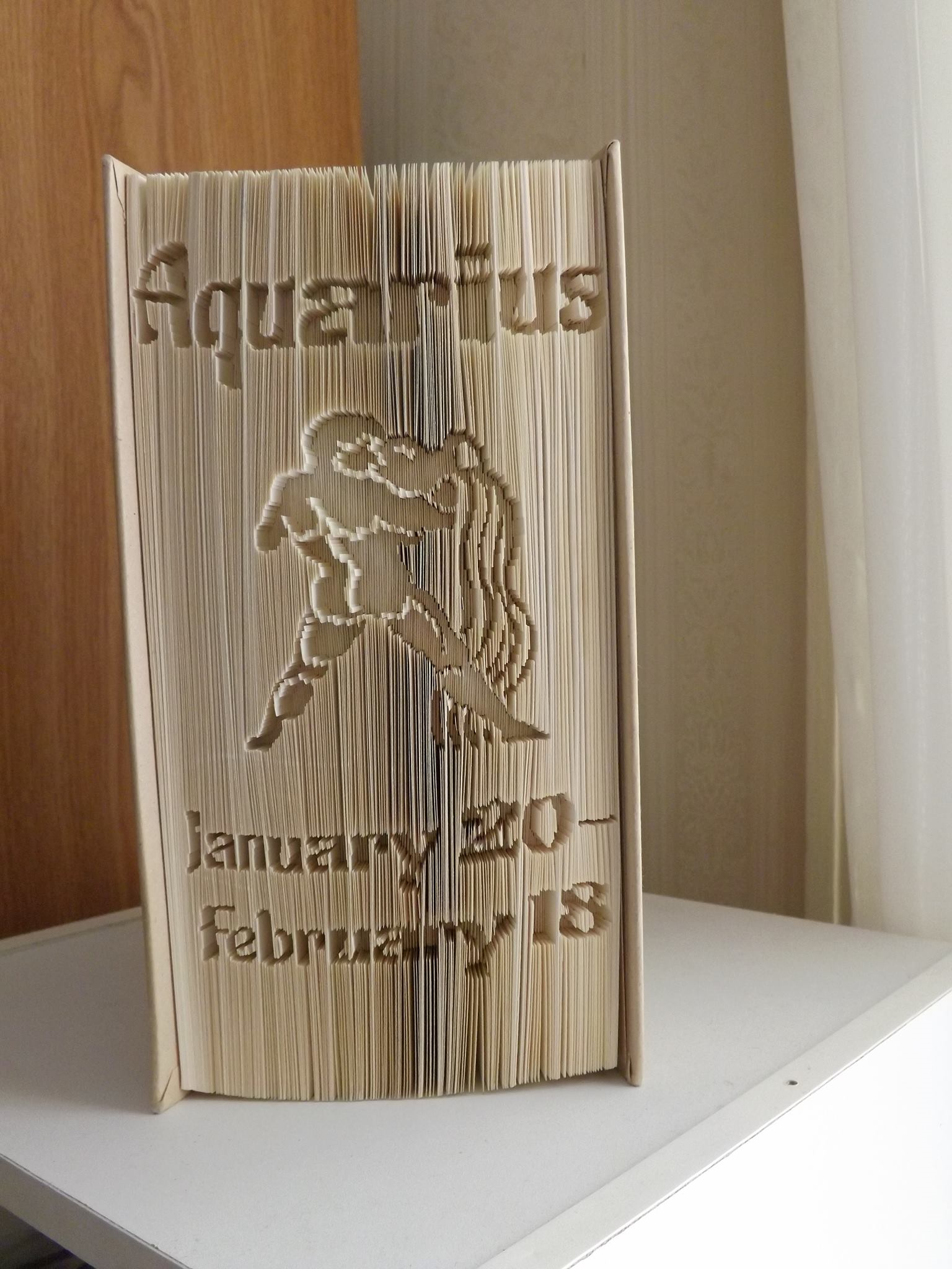 A great gift for a loved one born under the sign of Aquarius!