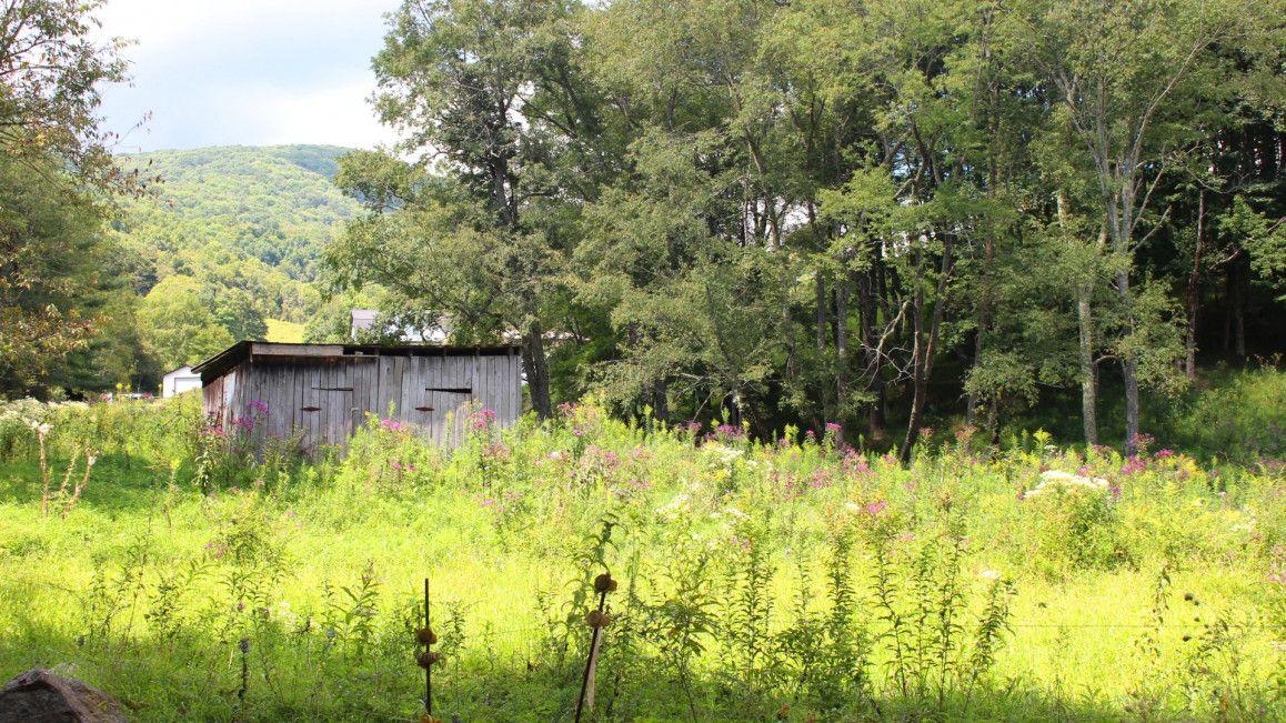 Rustic VA Mountain Cabin Farm in 2019 Cabin, Mountains