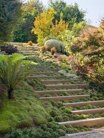 Image result for plants for steep slopes australia ...