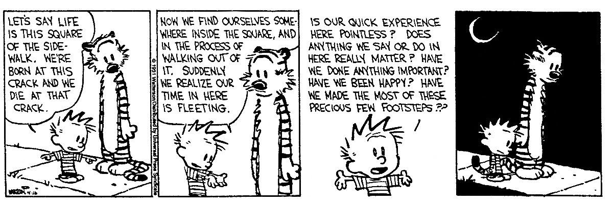 The Existential Buddhist (Comic Strip