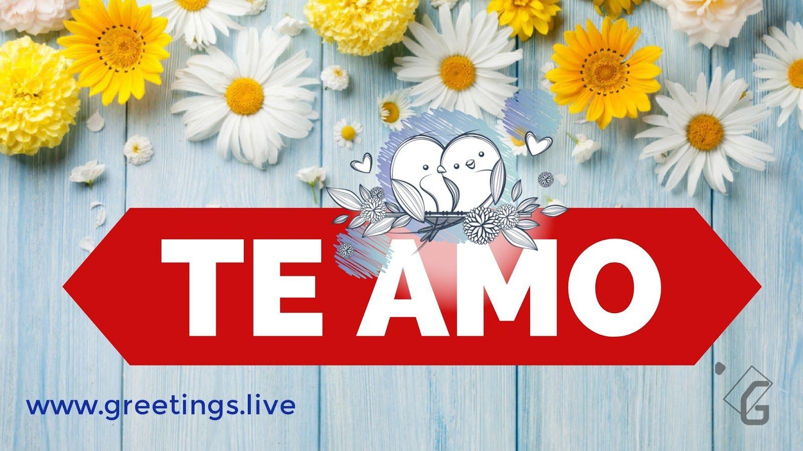 Love greetings in spanish spanish te amo means i love you in love greetings in spanish spanish te amo means i love you in kristyandbryce Gallery