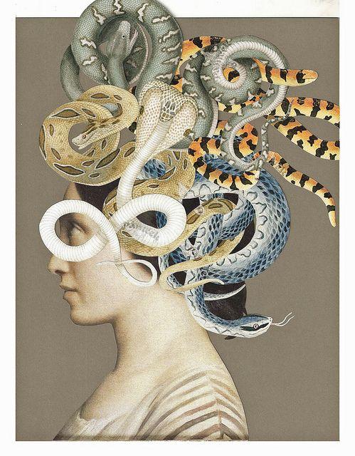 Medusa Medusa Artwork Medusa Art Snake Art