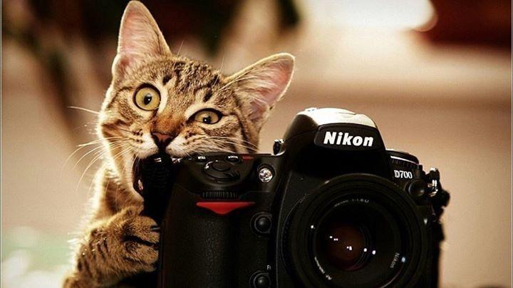Oh, ein Fotoapparat ;-)