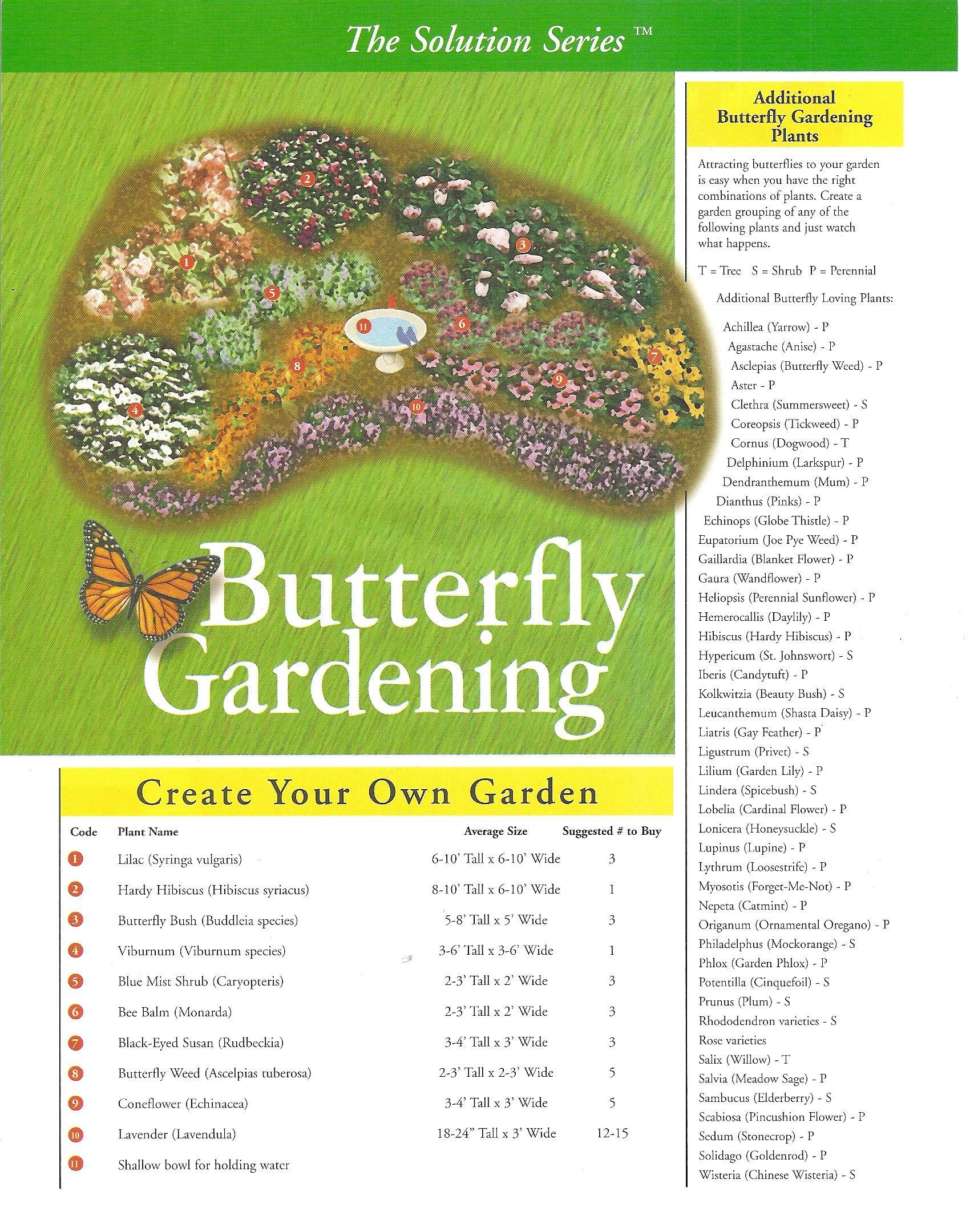 Butterfly Gardening - A list of plants that will attract butterflies to the garden.   Exactly what I need!!!!