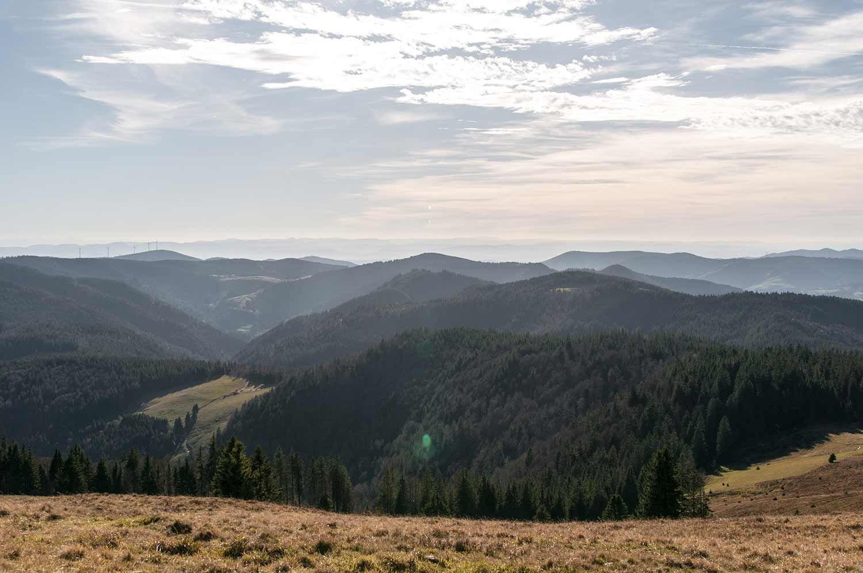 Herzogenhorn Dieser Berg ist einzigartig Schwarzwald