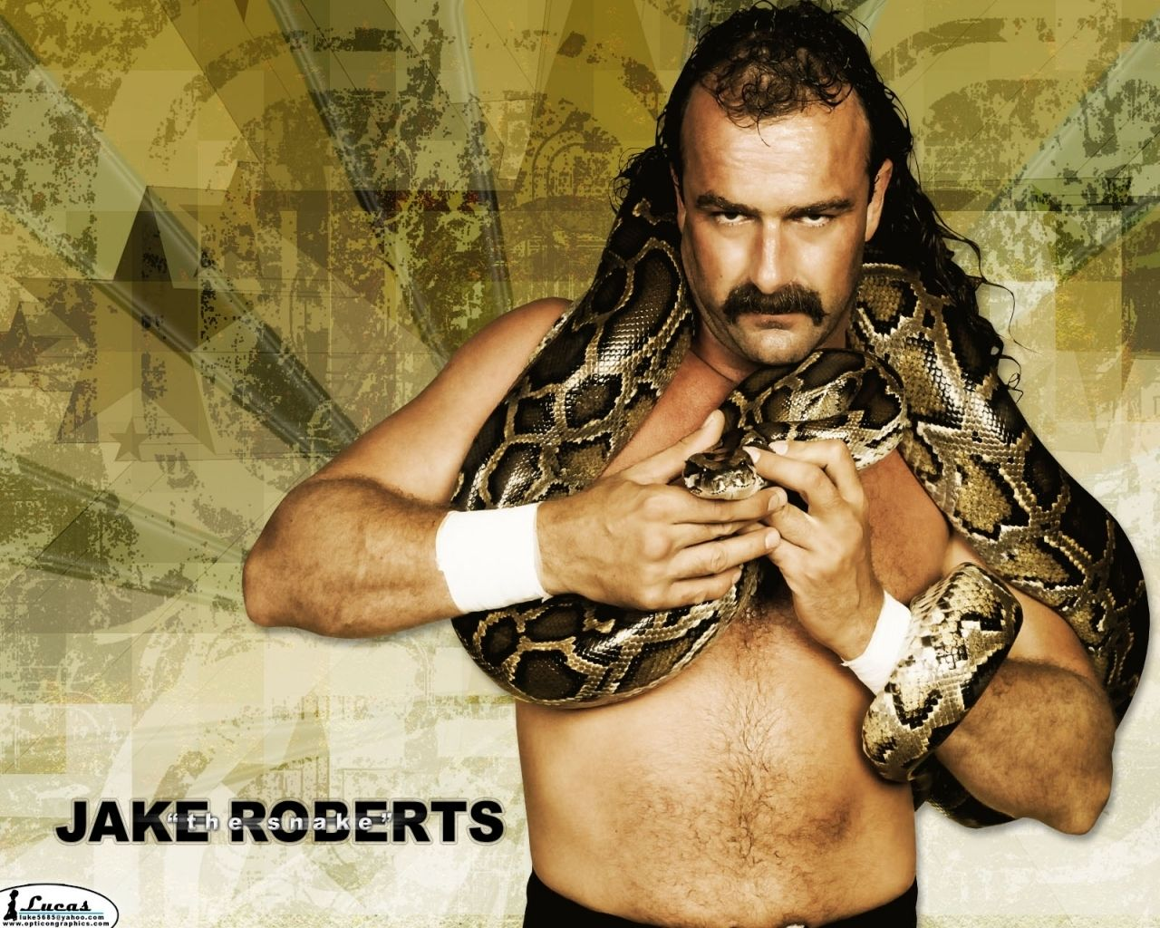 find this pin and more on wwe professional wrestling wallpaper jake the snake roberts