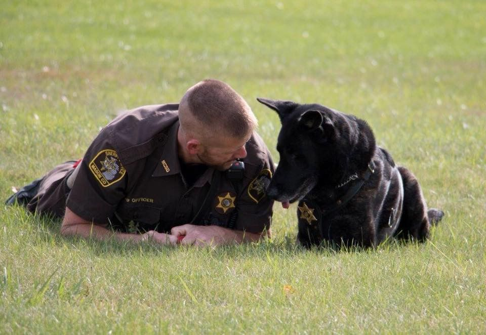 Pin By Paige Melton On Thin Blue Line Strong Military Working Dogs Military Dogs Military Service Dogs