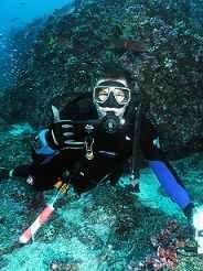Scuba Diving With Images Diving Scuba Scuba Lesson