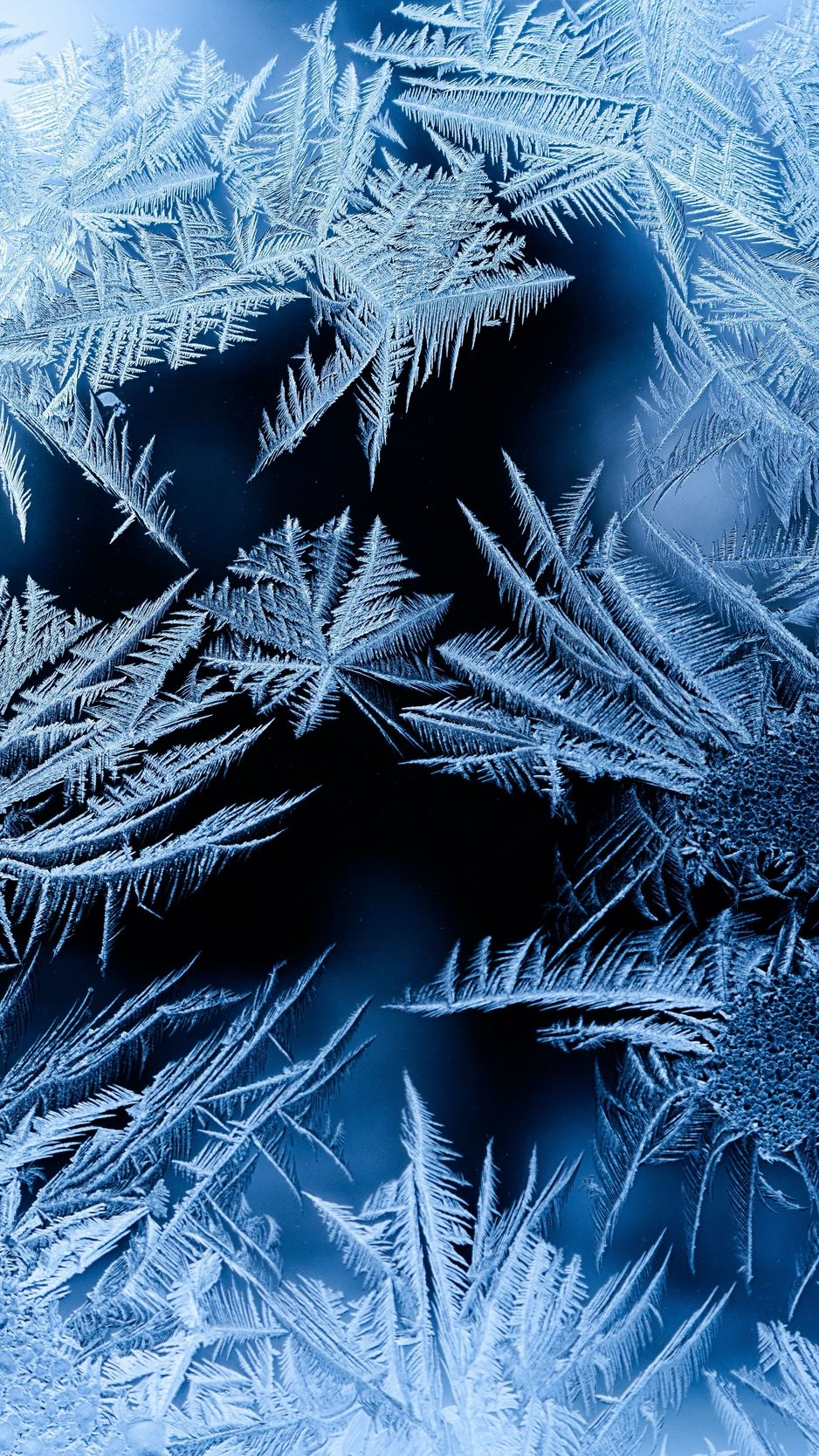Pattern Frosty Frost Glass Wallpaper Winter Wallpaper Cool Backgrounds Ice Photography