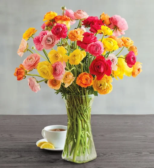 Ranunculus Bouquet Flower Delivery Harry David In 2020 Ranunculus Bouquet Flower Delivery Fresh Flowers Online